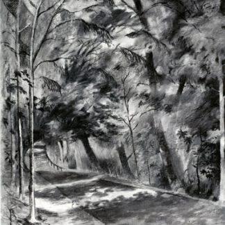 Saltburn Woods Charcoal